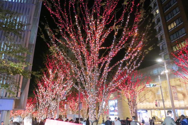 聖誕節燈飾登場 照亮六本木夜晚 六本木Hills けやき坂Galaxy ...