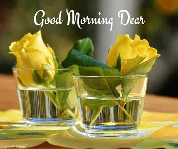 good morning dear jiju