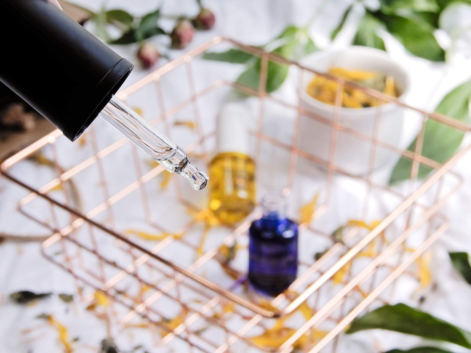 Kiehl's Midnight Recovery Concentrate, Kiehl's Daily Reviving Concentrate, Kiehl's Midnight Recovery Concentrate opinia, Kiehl's Daily Reviving Concentrate opinia,