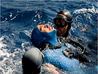 mergulho em apneia, curso de mergulho, Roupas de Mergulho, sub shop