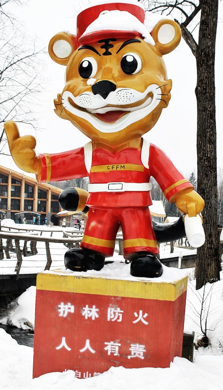 china ski sport