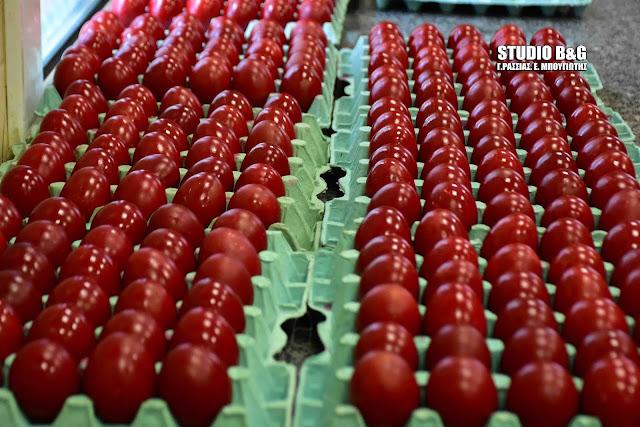 Εθελόντριες του συσσιτίου Ευαγγελίστριας Ναυπλίου έβαψαν κόκκινα αυγά για τους απόρους (βίντεο)