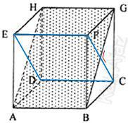 Bidang diagonal ABGH tegak lurus dengan bidang diagonal CDEF