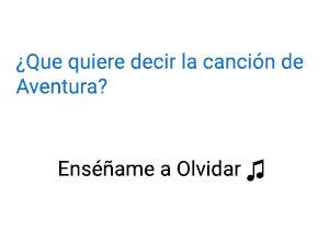Significado de la canción Enséñame a Olvidar Aventura.
