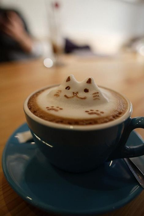coffee with cute kitty top shape