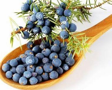 Cura de slabit cu tinctura de fructe de soc