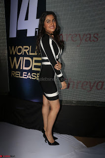 Ananya Soni in a Deep neck white blackl Dress at Shamanthakamani pre release function ~  Exclusive 055.JPG