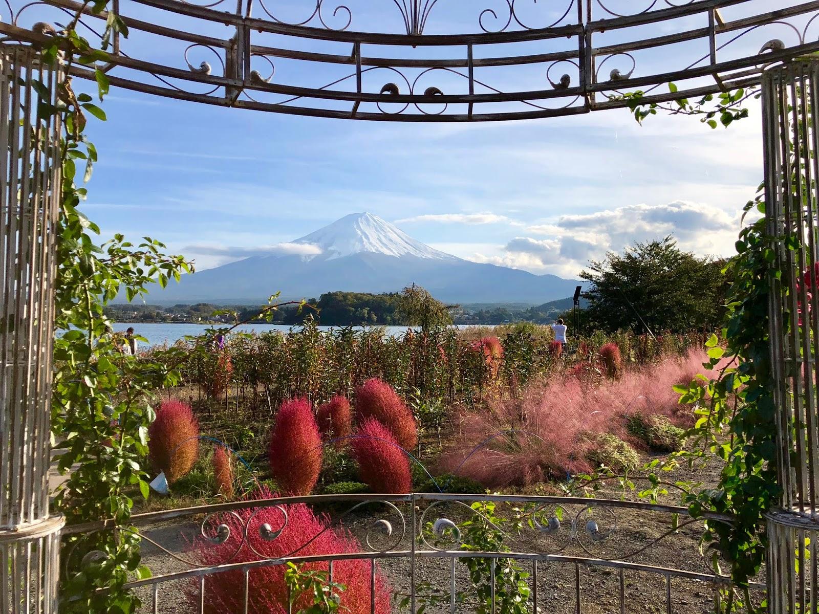 Download 75 Background Pemandangan Gunung Fuji HD Terbaik