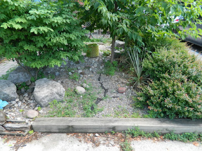 Leslieville front garden cleanup before by Paul Jung Gardening Services Toronto