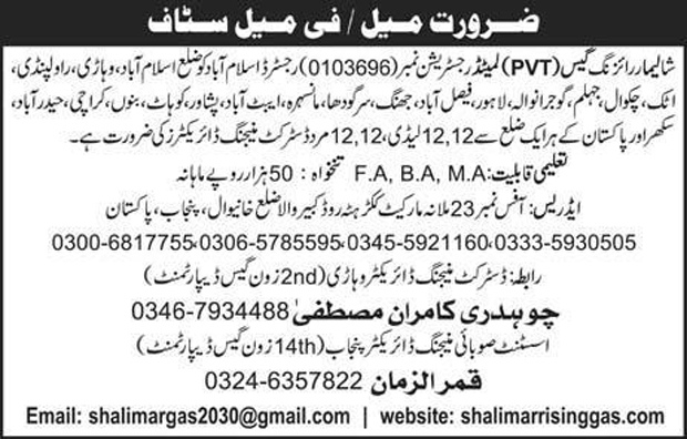 Job in District Managing Director Required In Sahlimar Rising Gas Company Augest 2017