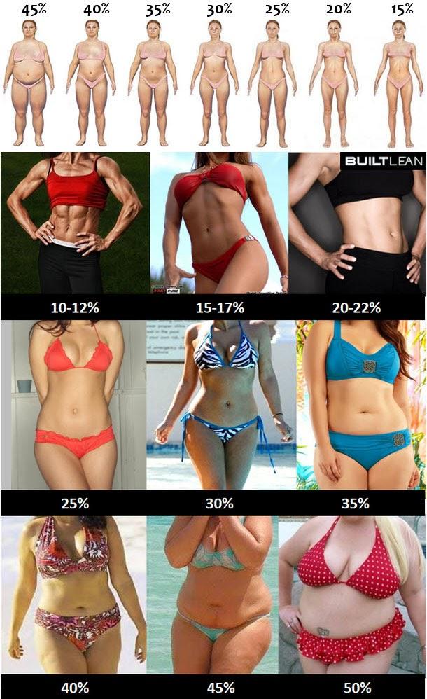 cual es el porcentaje de grasa corporal normal en una mujer