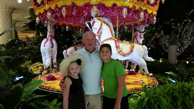 December Picture Post-A-Thon Begins: Vegas 2016 --How Did I Get Here? My Amazing Genealogy Journey