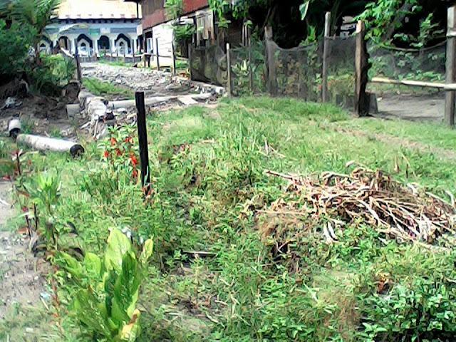 FOTO: Proyek Jalan Tani di Watan Rumpia Wajo Terbengkalai