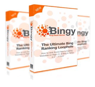 Bingy +Reseller [GIVEAWAY]