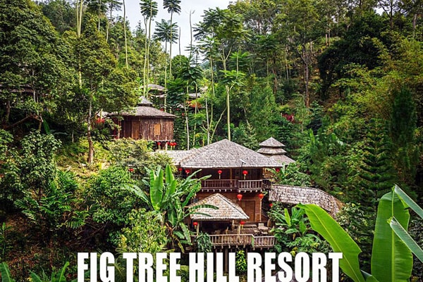 Penang Fig Tree Hill Resort