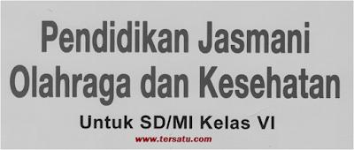 Download Soal UAS PJOK Kls 6 Smt 1 dan Jawaban, PDF, Word, Hots, KTSP Latihan Th. 2018 - 2019