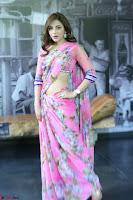 Angela Krislinzki Rogue Movie Fame Telugu Actress in Saree Backless Choli 058.JPG