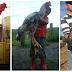 BAHIA: Conheça a fazenda de galos gigantes que chegam a medir 1,20m