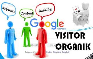 Cara Mendapat Ribuan Bahkan Puluhan Ribu Pengunjung Perhari Pada Blog (Terutama Blog Bule)