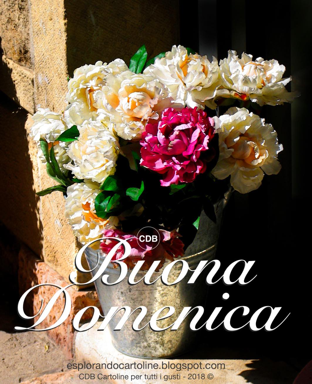 Fiori Bianchi Ottobre.Cdb Cartoline Per Tutti I Gusti Ottobre 2018