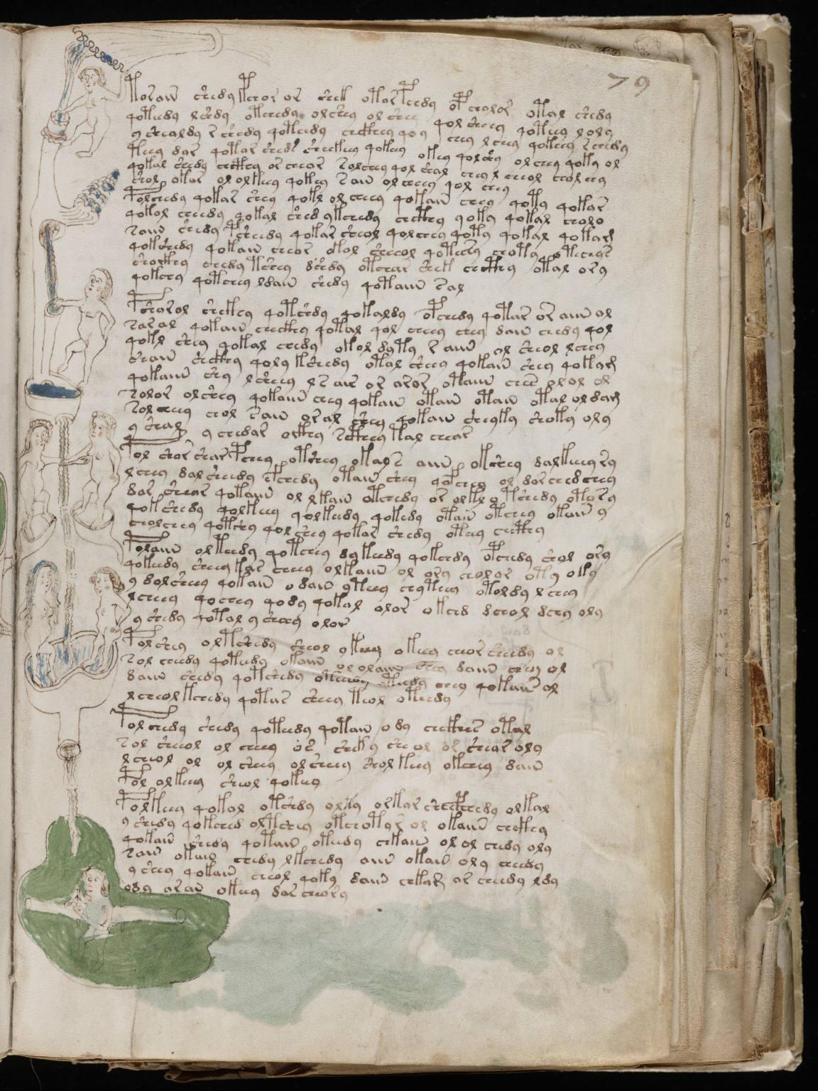 manuscrito141