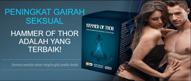 hammer of thor original di jogja