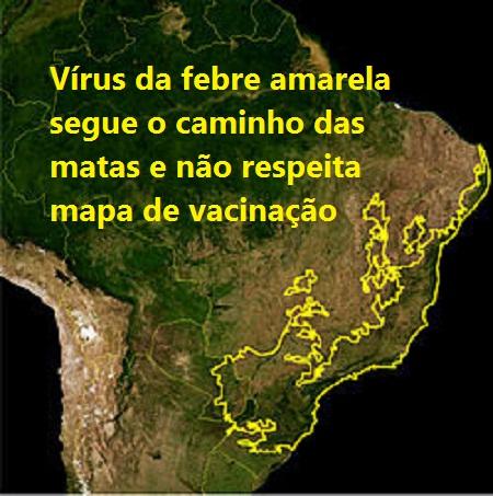 Mapa da Mata Atlântica = Brasil