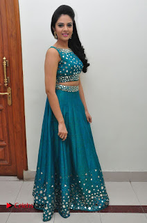 Sree Mukhi Pictures at Gentleman Audio Launch  0142