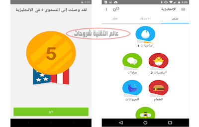 تطبيق-Duolingo-دولينجو