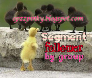 Segment Follower By Group
