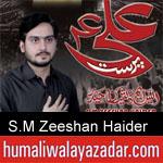 https://www.humaliwalyazadar.com/2018/09/sm-zeeshan-haider-nohay-2019.html