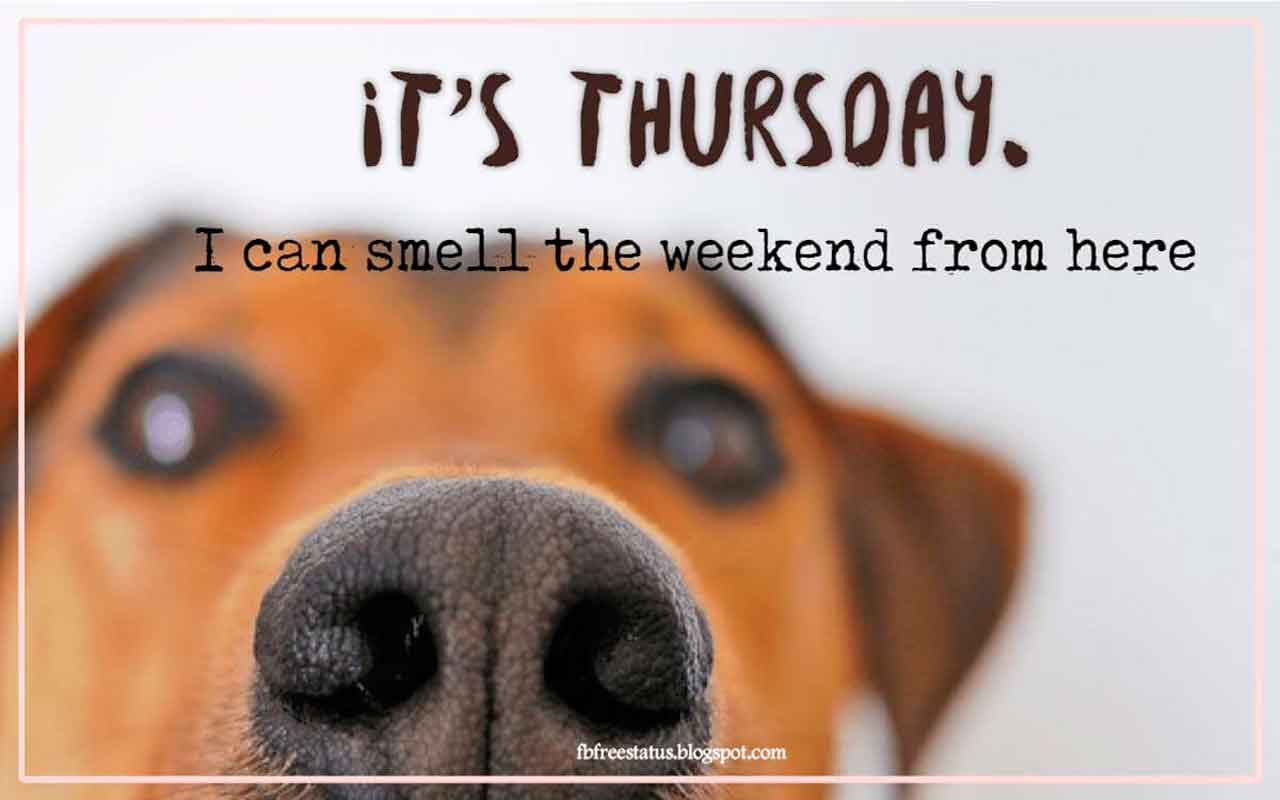 It's Thursday. I can smell the weekend from here.