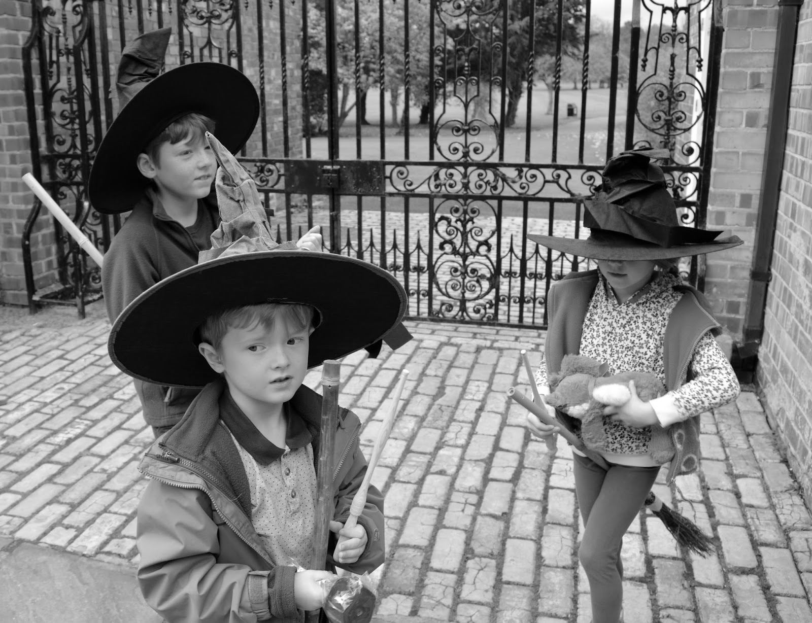 Half Term Hocus Pocus at Preston Park | The North East's very own Diagon Alley - witches in Diagon Alley
