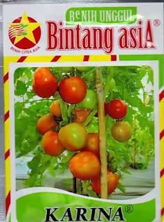 jual-benih-tomat-murah.jpg
