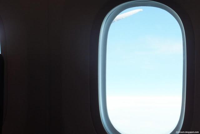 JAL752便からの眺め JL752-skyview2