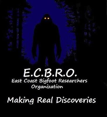 E.C.B.R.O. Webcast