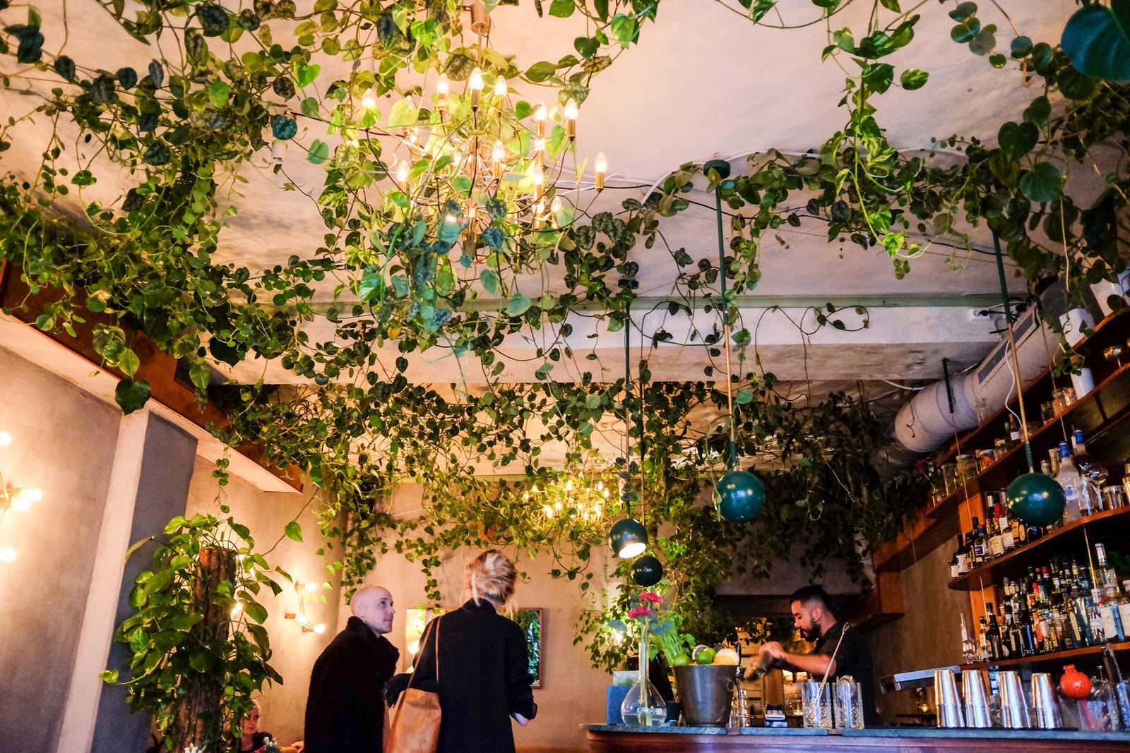 Torggata Botaniske @ Oslo, Norway