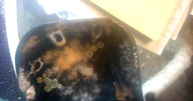 Cameo Garrett U S Chemical Contamination Of My House