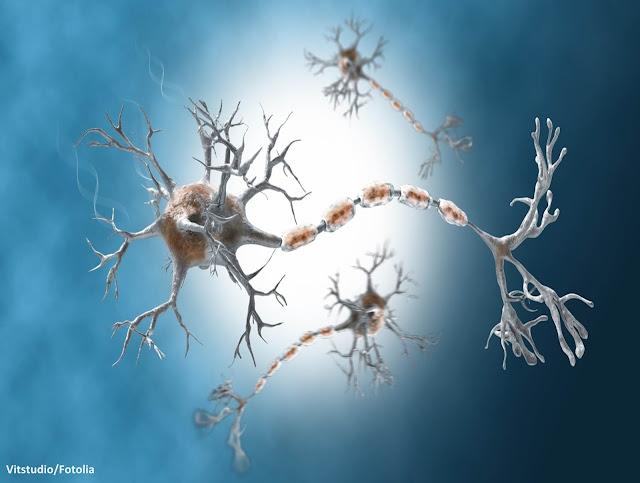 متلازمة غيلان-باريه, متلازمة غيلان باريه, Guillain-Barré syndrome, سبب متلازمة غيلان باريه, أعراض متلازمة غيلان باريه, علاج متلازمة غيلان باريه