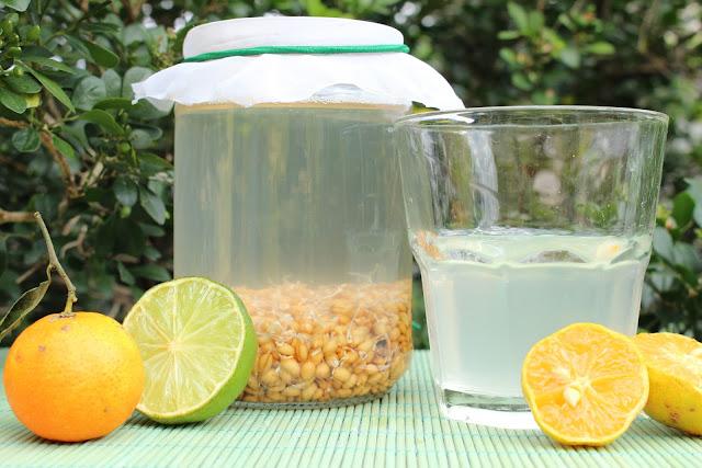 Mais saudável que iogurte | Rejuvelac de trigo: probiótico fácil e rápido de fazer, rico em lactobacilos vivos