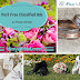 Promote Your Wedding Business for Free!!!