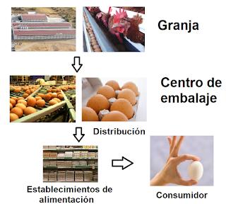Alimenta Acción Huevo Salmonella
