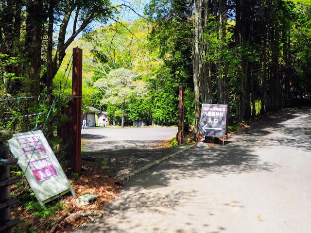 九頭竜神社入口