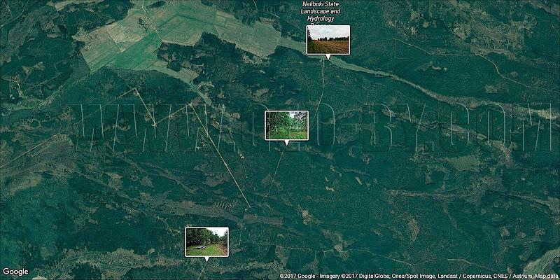 Спутниковая карта Налибокской пущи между реками Усса, Изледь и Каменка