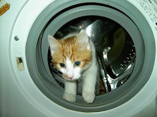 Inteligentné práčky zo 6.zmyslom