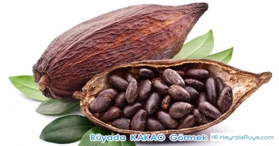 Rüyada Kakaonun Görülmesi rüyada kakaolu tatlı yemek rüyada kakaolu pasta yapmak rüyada kakaolu hamur yapmak rüyada kakaolu yaş pasta görmek rüyada kakaolu pasta görmek