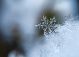Picture of a beautiful snowflake.