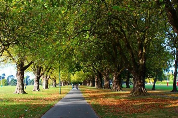Informasi-Lengkap-Berlibur-ke-Christchurch