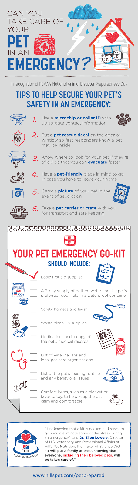 emergency go kit and disaster plan for your pet