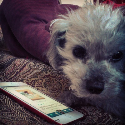 Murchie lays on a red tapestry comforter with his face directly towards the camera, his expression accusatory. Beside him is a red-bordered iPod with The Selection Stories's cover on its screen. The cover is indistinct at this angle but is primarily pastel in tone.